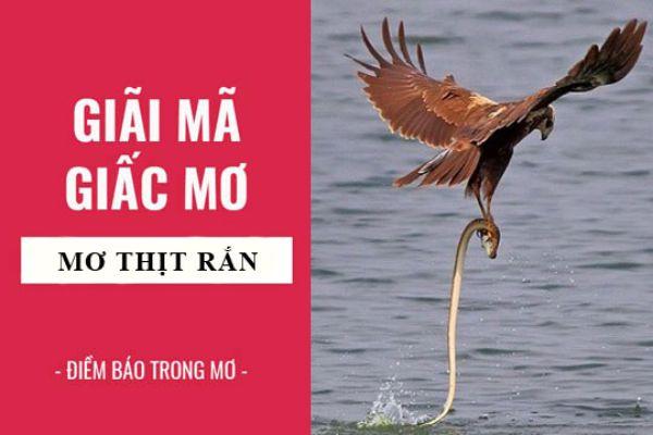 nam-mo-thay-an-thit-ran